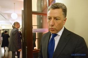 Волкер не вірить у вибори в ОРДЛО цього року