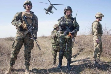 Ukrainian marines take part in exercise Platinum Eagle 2019