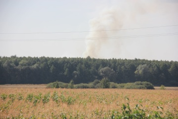 Grasbrand: Sechs Explosionen nahe Waffenlager Kalyniwka