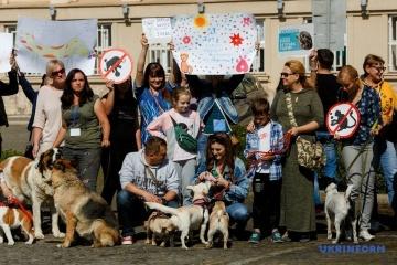 Une marche pour la défense des animaux s'est déroulée dans plusieurs villes ukrainiennes