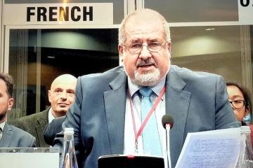 Czubarow - Misja OBWE powinna działać na okupowanym Krymie