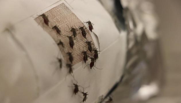 Лихоманка денге у Пакистані: 34 загиблих, 20 тисяч постраждалих