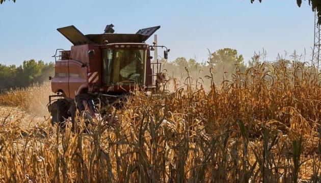 На Полтавщині загорілося поле кукурудзи площею 2,5 тисячі га — ДСНС