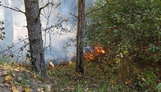 Лісова пожежа під Житомиром охопила вже 100 гектарів