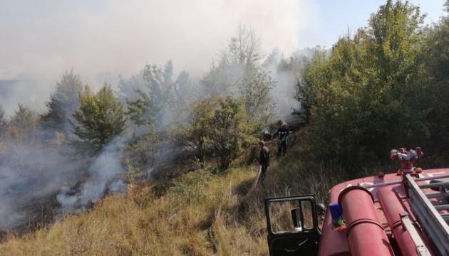 Поблизу Києва за місяць сталося понад 800 пожеж