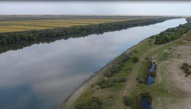 У Дунайський біосферний заповідник завезли прайд левів - екологи б'ють на сполох