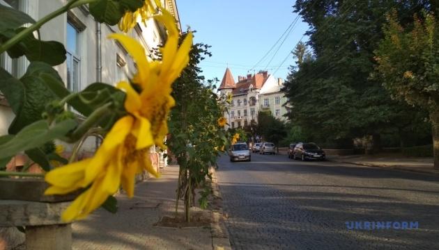 Бой подушками и вареник-фест: в Черновцах устроят туристическую неделю