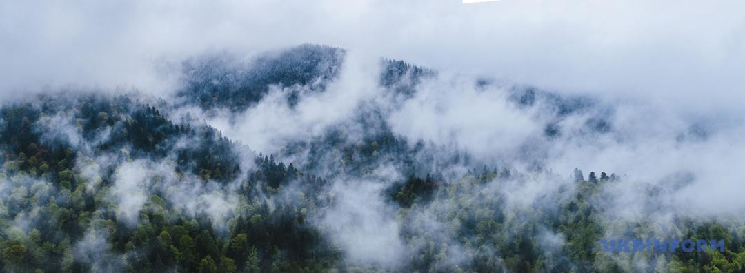 """Закарпатський """"Синевир"""": чарівнича краса та нецивілізована природа, фото-7"""