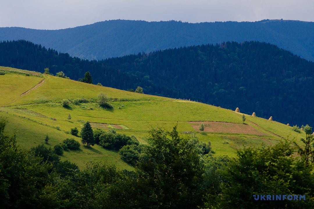 Туристичний Синевир: Зелений мед, гори сміття та надія на розвиток (ФОТОРЕПОРТАЖ), фото-22