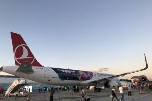 У Туреччині припинили продаж квитків на внутрішні авіарейси