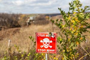 На Донбасі розмінували 35 тисяч гектарів землі - Наєв