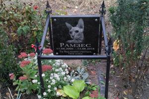 Русанівське кладовище тварин: фільм жахів скасовується?