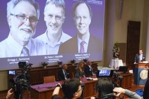 Открытие нобелевских лауреатов повлияет на медицинскую практику