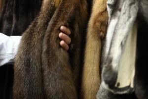 Каліфорнія стала першим штатом, де заборонили продаж хутряного одягу