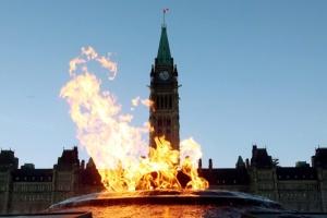 """Канадський політичний компромат: """"Кленові вісті"""" з Максимом Наливайком, випуск #2"""