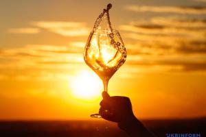 """На Закарпатті планують створити """"Дорогу вина та смаку"""""""