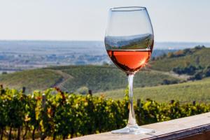 Специалисты оценили николаевские виноматериалы за сортовые свойства, вкус и аромат