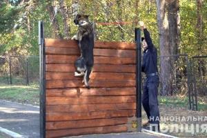 У Слов'янську поліція відкриває кінологічний підрозділ