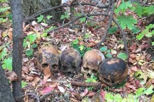 У Миколаєві затримали чоловіка, який розносив по місту людські черепи