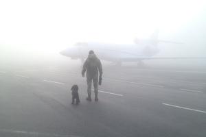 """В аеропорту """"Київ"""" через туман скасували три рейси, сім - перенаправили в Бориспіль"""