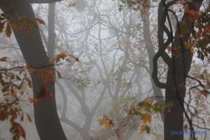 Украину накроет густой туман