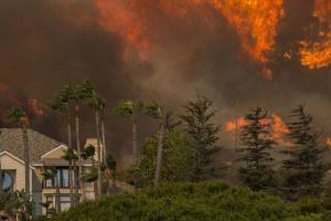 У Каліфорнії вирує лісова пожежа: евакуювали майже 8 тисяч осіб