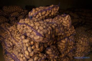 L'Ukraine bat son record des importations de pommes de terre