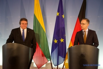 Maas, Linkevičius discuss prospects for Donbas conflict settlement