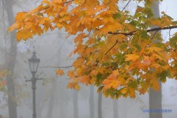 Kyiv dans le brouillard