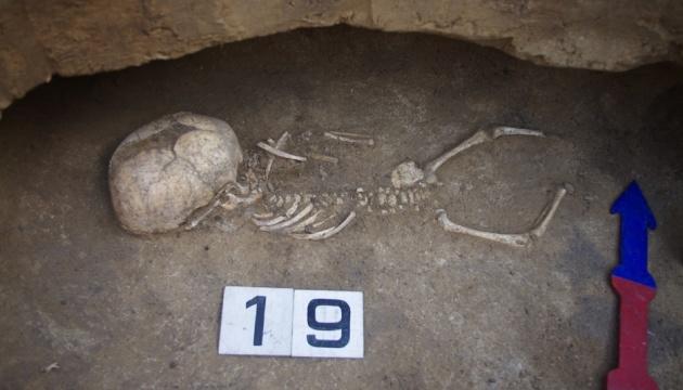 Загадка некрополя Більського городища: у США проводять ДНК-аналіз знахідок