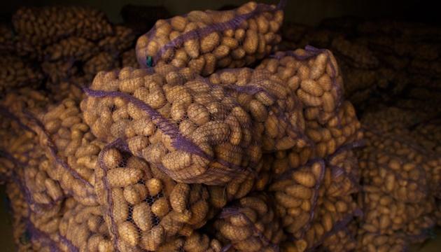 Україна побила рекорд з імпорту картоплі