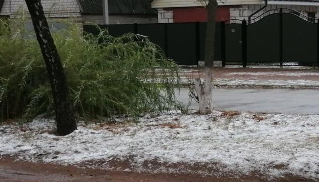На Житомирщині випав перший сніг