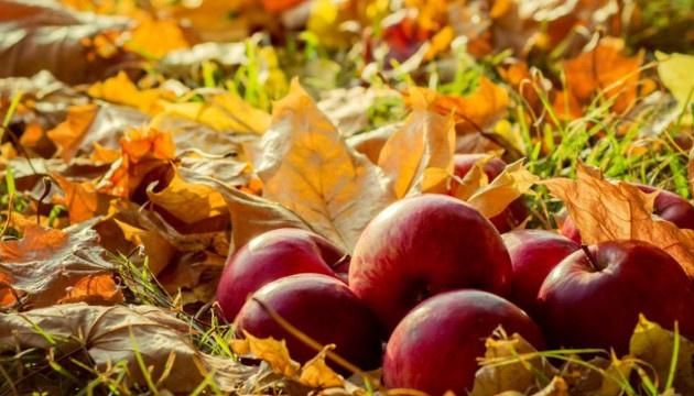 9 жовтня: народний календар і астровісник