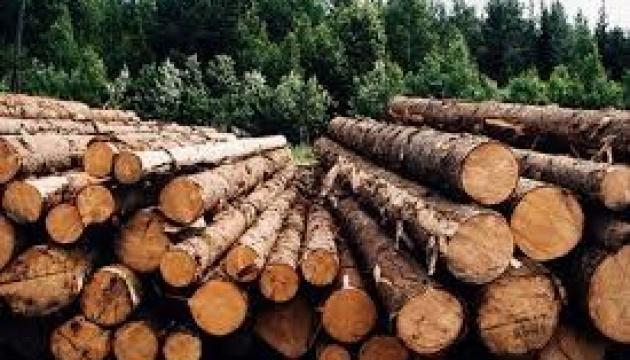 У Цуманську ОТГ везуть на переробку ліс-кругляк з Європи