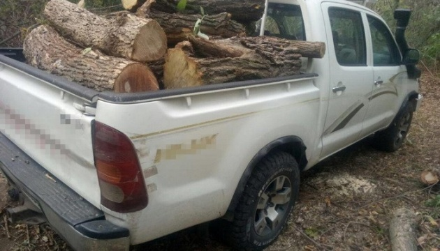 На Кіровоградщині затримали «чорних лісорубів»