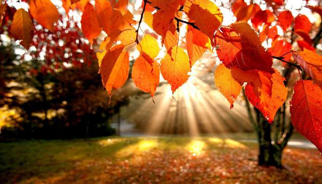 18 жовтня: народний календар і астровісник
