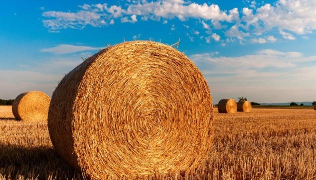 Земельна реформа: чи домовляться влада і аграрний бізнес?