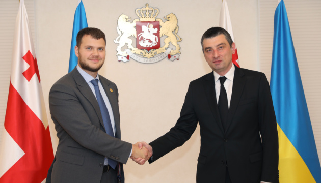 Infrastructure minister Kryklii: Ukraine interested in Georgia's deregulation and concession experience