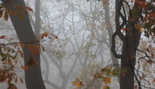 Україну накриє густий туман