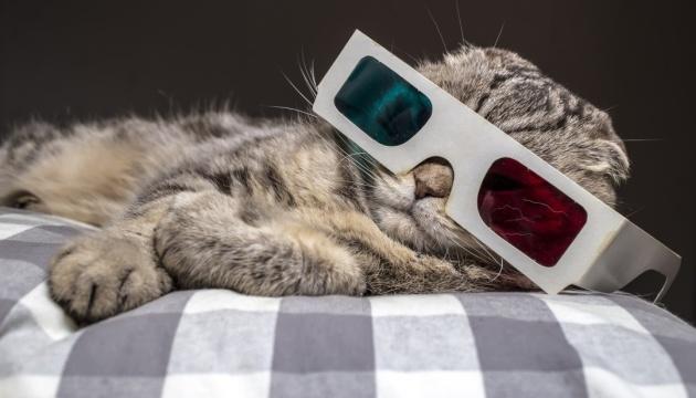 Афіша на 25-27 жовтня: Геловін, кіно з котиками та ніч рекламожерів