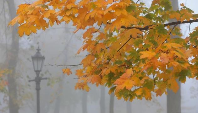 Luftverschmutzung: leichte Überschreitung in manchen Städten