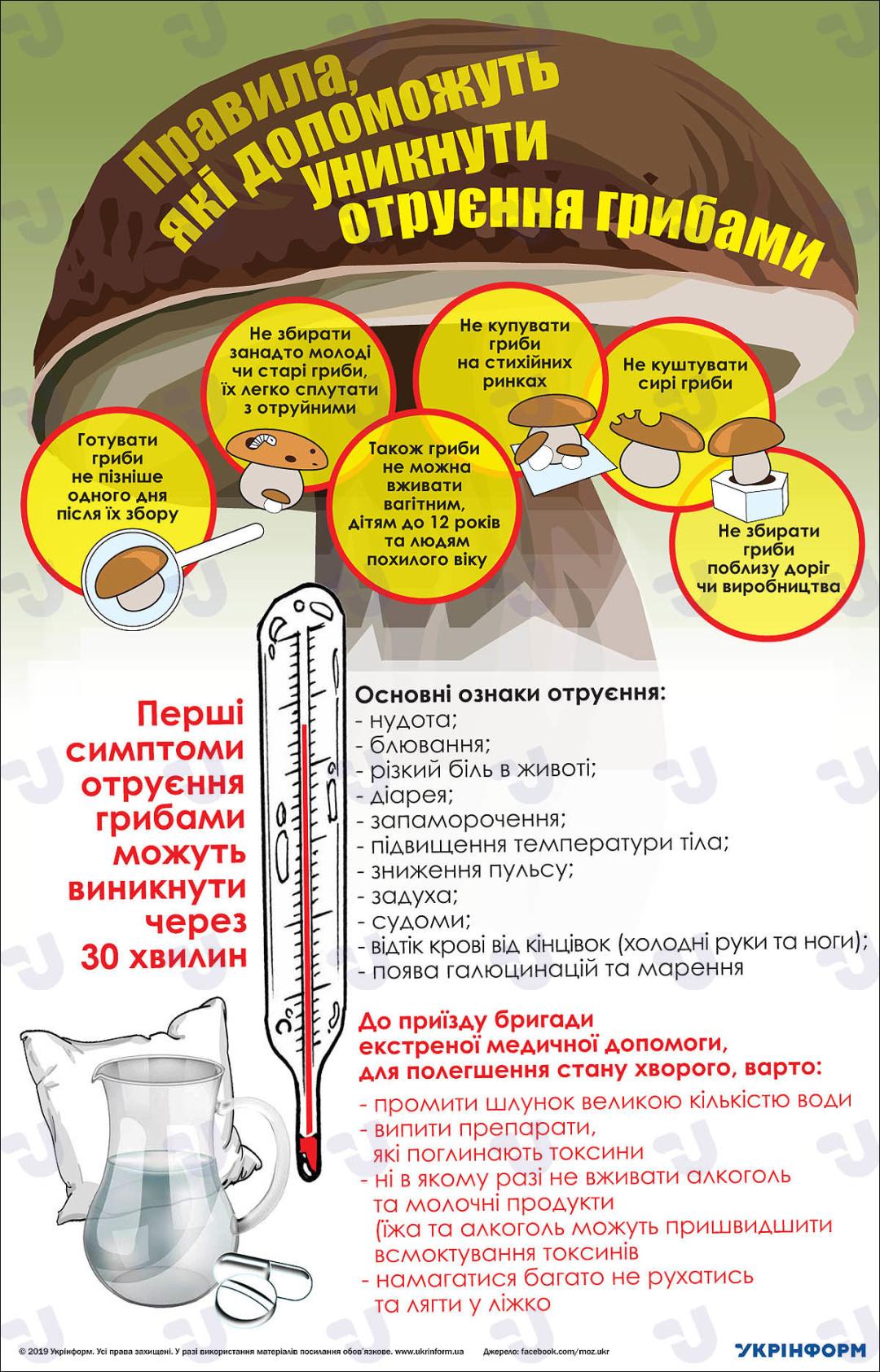 Правила, які допоможуть уникнути отруєння грибами. Інфографіка