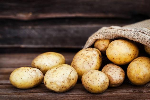 Уроздріб за картоплю правлять від 8 до 12 гривень