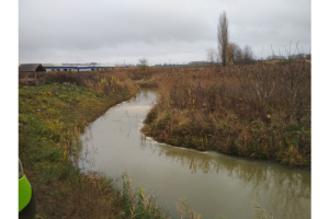 Сахарный завод под Луцком снова обвиняют в загрязнении воды и воздуха