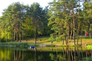 В Голосеевском районе обустроят веревочный парк
