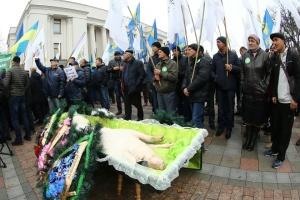 Schwein in Sarg: Landwirte protestieren gegen Bodenhandel