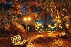 Warmest November night recorded in Kyiv
