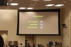 Як в ООН ухвалювалася резолюція щодо дотримання прав людини в Криму