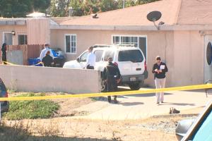 Унаслідок стрілянини в США загинули троє дітей