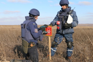 Bei Petriwske bereits 12 Hektar entmint